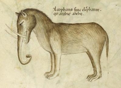 Tractatus de Herbis 1440 - Elephant